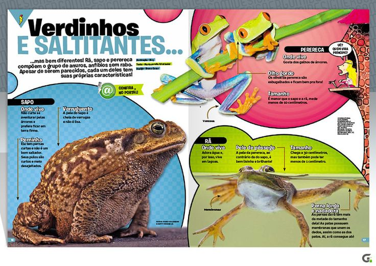 Page layout - Magazine - Recreio