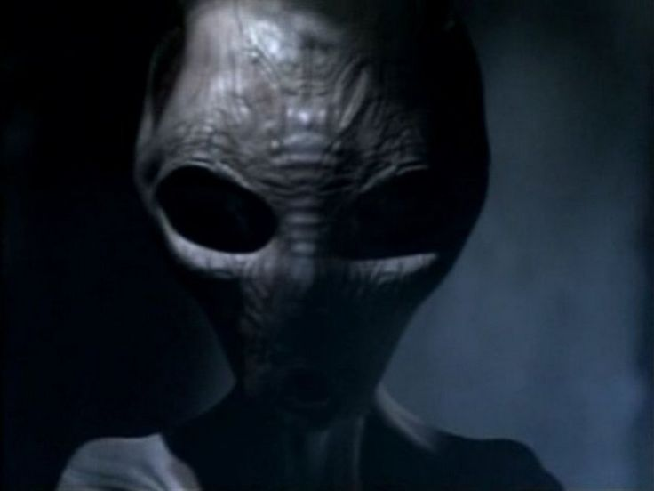 #Alien #Mystery – British Cop Witnesses Tall White Aliens Inspecting Fresh Crop Circle :According to a story circulating in the UFO and alien conspiracy theory blogosphere, a British Police Sergeant had an encounter with Tall White Aliens on July 6, 2009. The aliens were allegedly inspecting a freshly-made crop circle in a field in Wiltshire, …