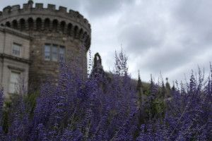 """Explore downtown Dublin and the Dublin Castle - check out the """"Day in Dublin Itinerary"""""""
