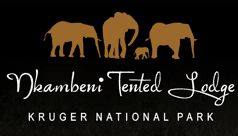 Nkambeni Tented Lodge in Kruger National Park. Reasonable prices.