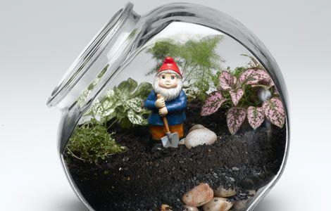 cool kid's terrarium (I just like the gnome!)