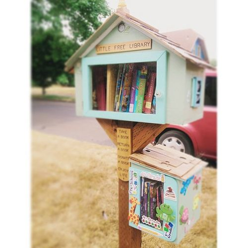 my parents, created and attached a kid's library as an annex to their little free library. Seriously, people, how cute is that?