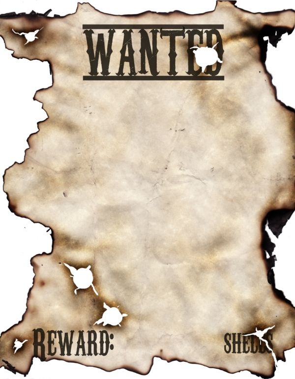 Wanted Poster by ~DAWildGuns on deviantART cowgirl party - examples of wanted posters