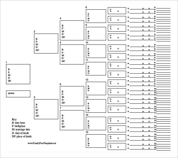 Family Tree Diagram Template 20 Free Word Excel Pdf Format