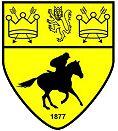 Newmarket Town FC