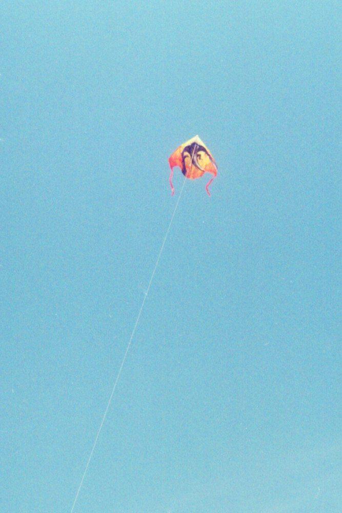 воздушный змей, обское море, лето, пленка, kite