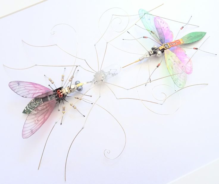 The Web of Life, Trio of Bugs: The Spider, Fly and Ichneumon Wasp by Julie Alice Chappell by DewLeaf on Etsy