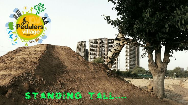 Recently..... #pedalersvillage #mtb #gurgaon #india #goat