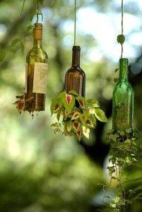 <3 Love this idea to cut off the bottom, drill holes and plant some vines in a wine bottle! Would be beautiful hanging on a shady deck.