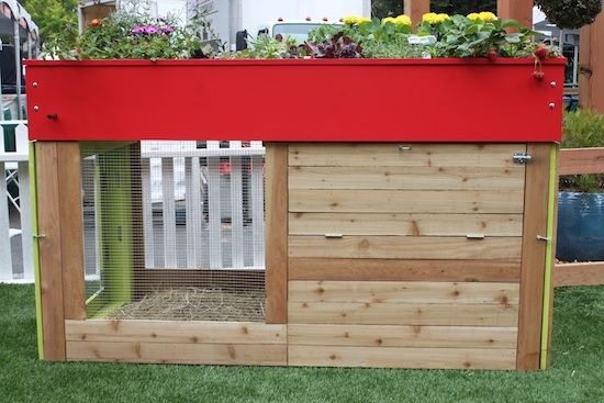 chicken coop with living roof!