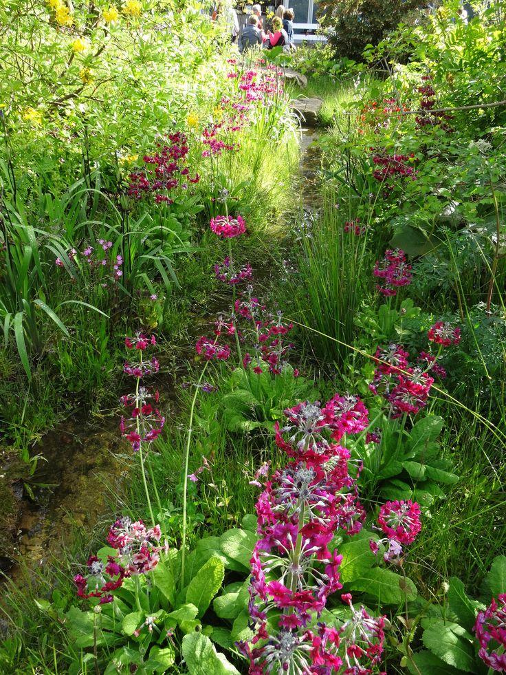 The Laurent-Perrier Chatsworth Garden by Dan Pearson. Chelsea Flower Show 2015