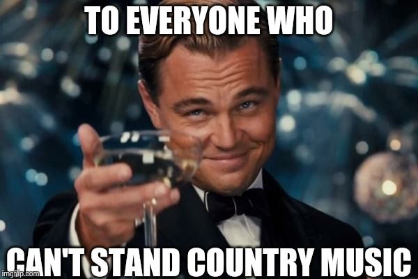 Leonardo Dicaprio Cheers Meme | TO EVERYONE WHO CAN'T STAND COUNTRY MUSIC | image tagged in memes,leonardo dicaprio cheers | made w/ Imgflip meme maker