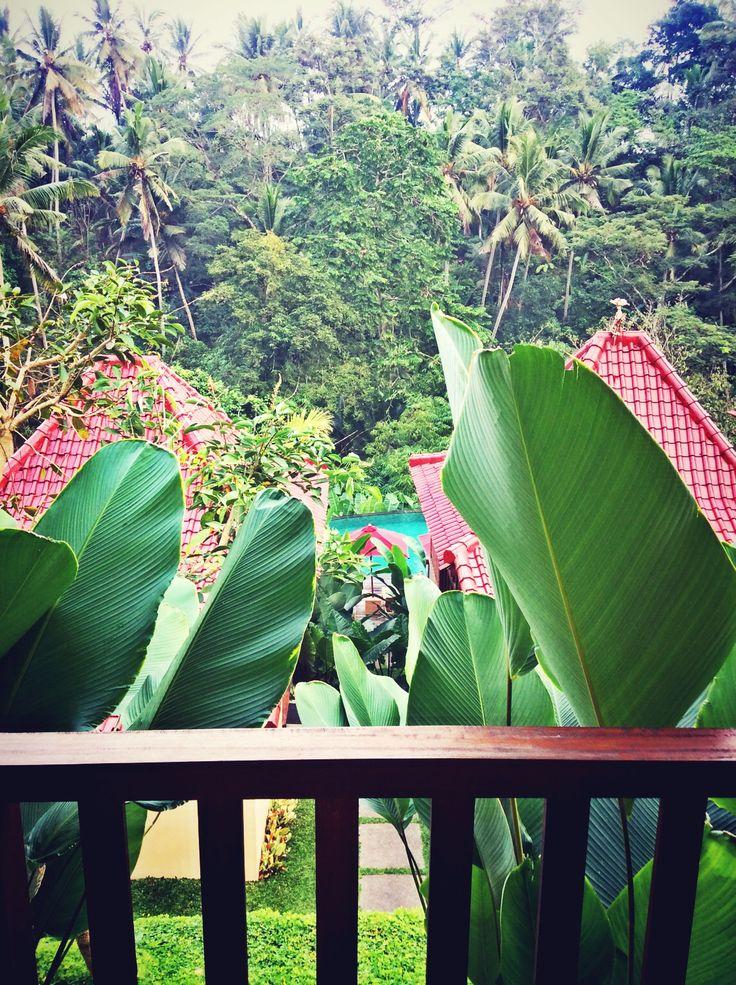 Ubud Bali Indonesia