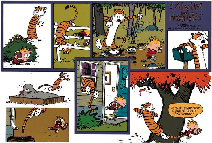 Calvin and Hobbes, FOOTBALL - We think EVERY sport should be played cross-country!