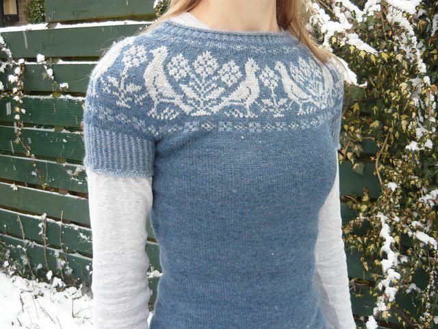 Ravelry: kleur's birds yoke sweater