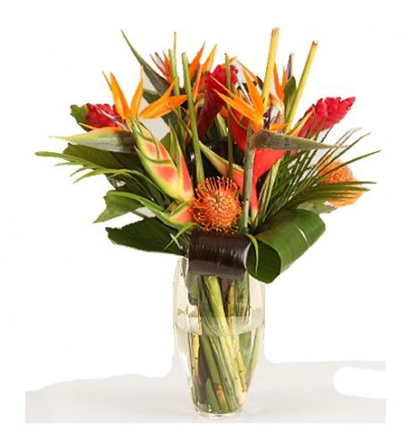 This arrangement contains the following flowers: 3 x Ginger 2 x Heliconia 1 x Pin Chusion Protea 5 x Strelitzia Tropical Greenery Hand-tied by our florists.