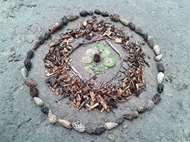 Natur-Mandala   Kindergarten Ideen