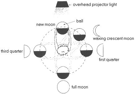 Great way to have students model the phases of the moon!