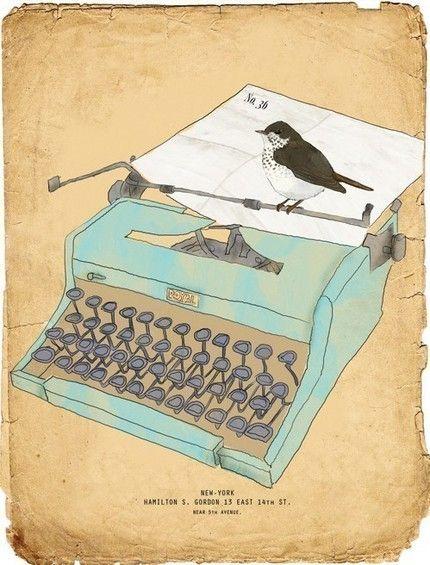 type bird by tabitha emma.