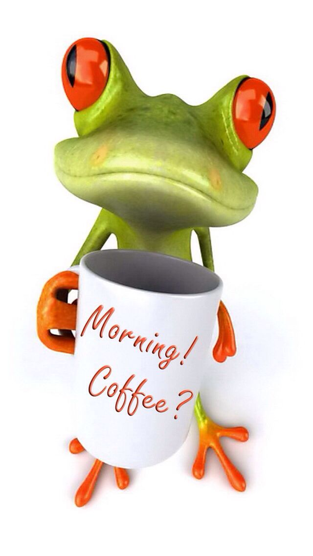 MORNING COFFEE FROG IPHONE WALLPAPER BACKGROUND | IPHONE