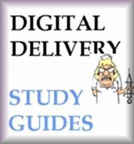 DSST Flashcards [with DSST Practice Questions]