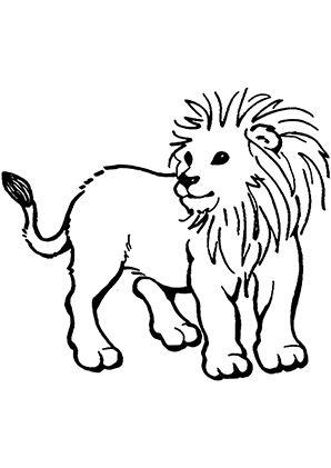 ausmalbild junges löwenkind zum kostenlosen ausdrucken und