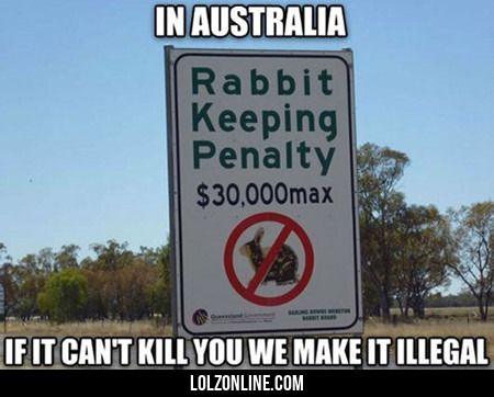 In Australia If It Can't Kill You...#funny #lol #lolzonline