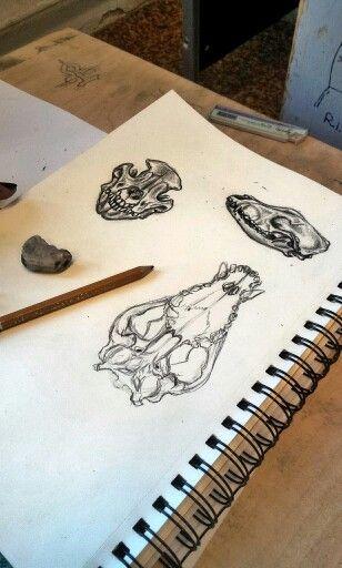 Dog skull art