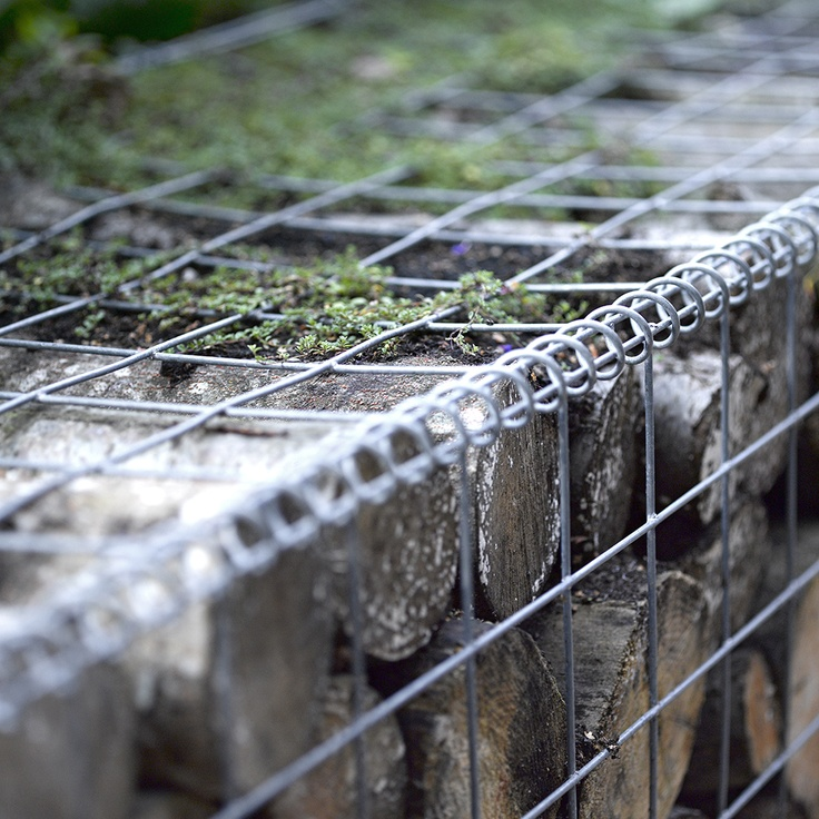 log retaining wall     image by david cadzow