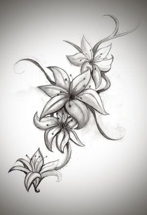 Pin Black And White Stargazer Lily Tattoos on Pinterest