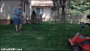 New trending GIF on Giphy. dog lawnmower yard work. Follow Me CooliPhone6Case on Twitter Facebook Google Instagram LinkedIn Blogger Tumblr Youtube