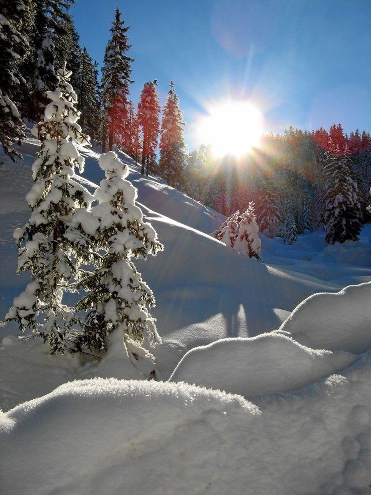 айны картинки с добрым утром зимний пейзаж гербах