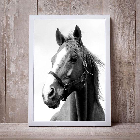 Mira este artículo en mi tienda de Etsy: https://www.etsy.com/es/listing/501988743/print-horse-art-horse-wall-decoration   Beautiful giraffe black and white ✅Check my website 6.05  #giraffe #print #printable #blackandwhite #home #homestyle #homesweethome #art #deco #decorate #etsy #etsyprint #aliexpress #aliexpressespaña #sale #sweet #cute #japan #newyork #scotland #beautiful #home #pinterest #animal #baby
