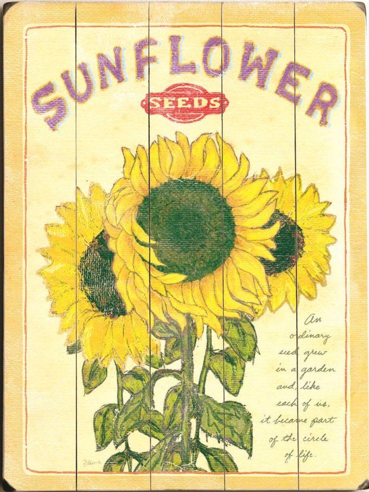 Vintage Sunflower Wall Decor : Sunflower seeds vintage sign custom signs