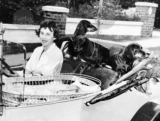 Margaret Chandler with her dachshunds.