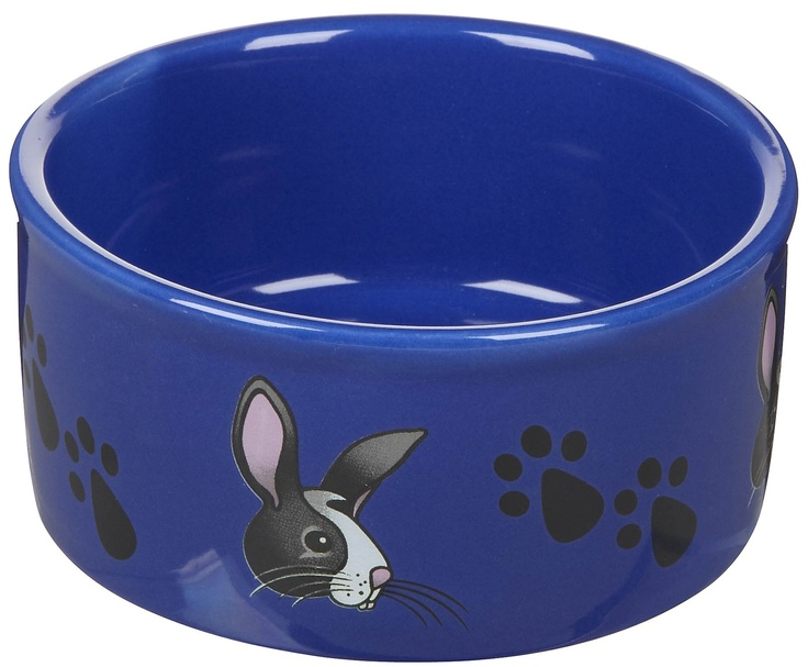 This bunny bowl is sure to be a hit with your hopper.