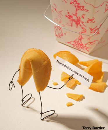 That's what friends are for...: Terry O'Neil, Funny, Make New Friends, Fortune Cookies, Bentobject, Foodart, Food Art, Bent Object, Terry Border