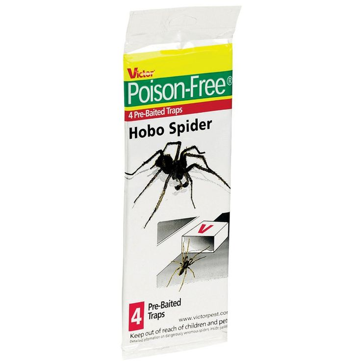 Poison Free M293 Hobo Spider Trap 4 Count - 1384-9112