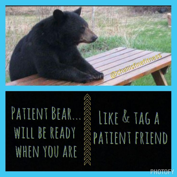 Share If You Are Trying To Be A Patient Bear Today I Can T Wait To Get To The Gym Stressoverload Patience Itisaprocess Tea Nutrition Coach Bear Fitness