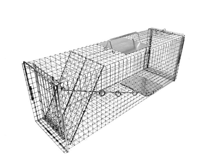"Traps :: Feral Cat Traps & Accessories :: Feral Cat Traps :: 608NC - 36"" Cat Trap Designed by Neighborhood Cats Organization"