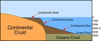 As you can see, the brown part of this diagram is still considered the continent. The continental shelf is usually where people swim when they go to the ...