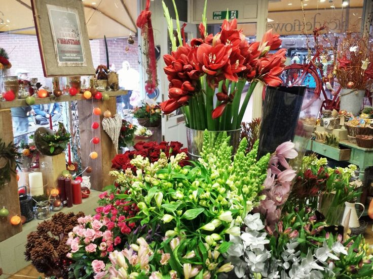 Gorgeous display in Arcade Flowers as they approach Christmas