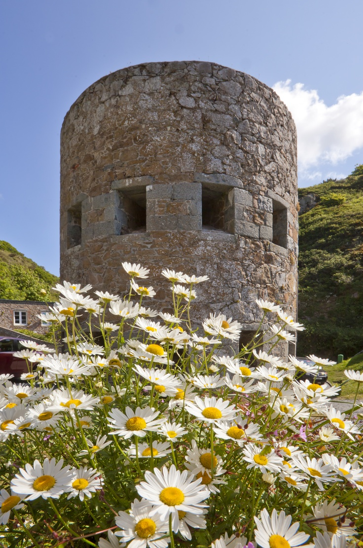 Guernsey's Petit Bot loophole tower with wildflowers.