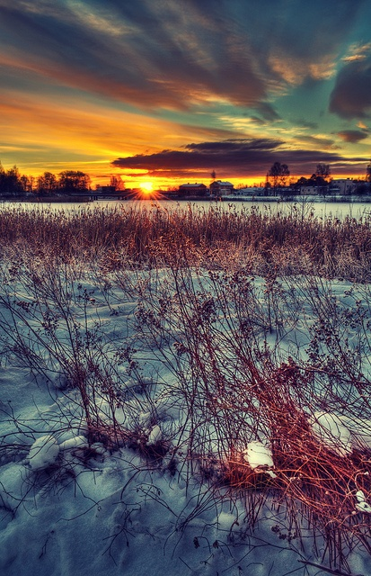 Sweden: Sweden, Evening Lights, Holiday Destinations, Scandinavian Nature, Places, Scandinavian Trips, Sky Watchers, Things Swedish, Dreams Destinations