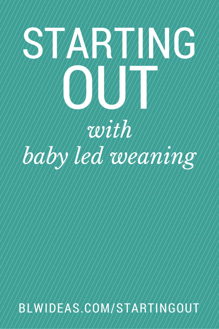 A few important notes for moms and dads starting out with baby led weaning. Very thorough and informative.