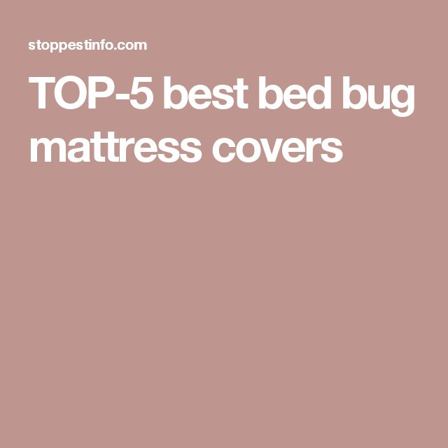TOP-5 best bed bug mattress covers