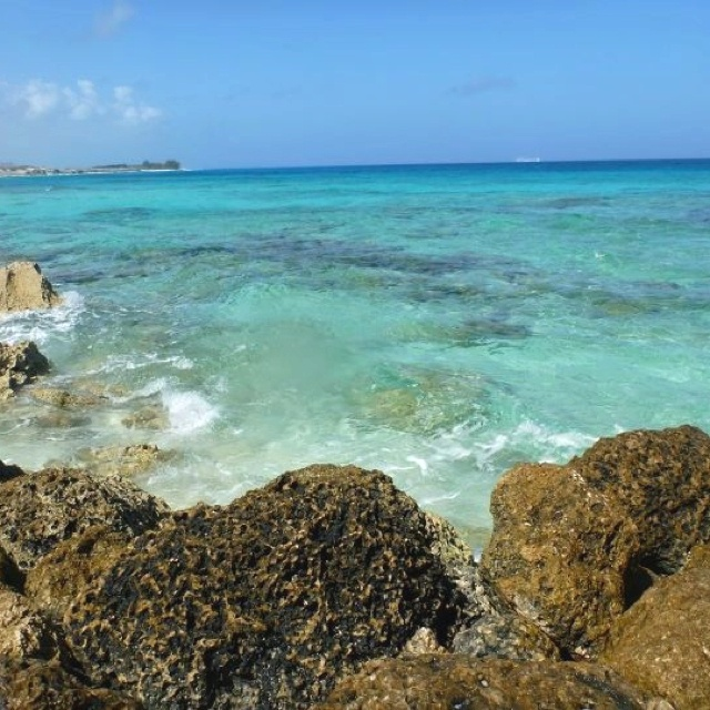 Blue Lagoon Island, Bahamas- great place for snorkeling!
