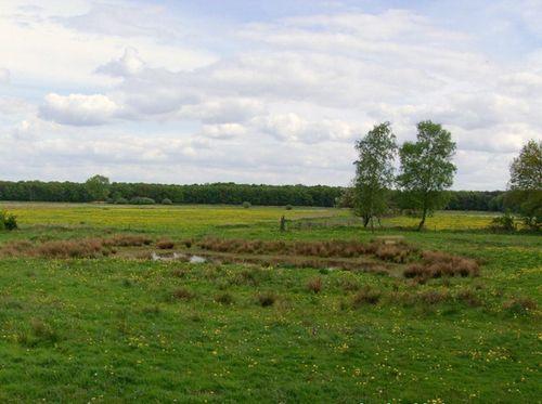 Lekker fietsen en wandelen in Nederland ~ Fietsenwandelweb.nl
