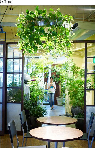 parkERs |グリーンを活かした空間デザイン、オフィスの室内緑化ならパーカーズ | ギャラリー