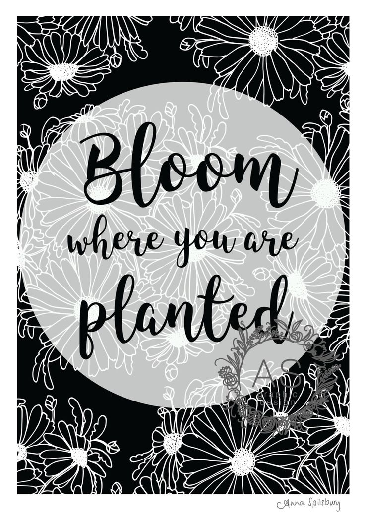 Bloom Where You Are Planted- Black and White- PRINTABLE ART, Instant Download, Downloadable Art, Inspirational Quotes by AnnaSpilsburyDesign on Etsy https://www.etsy.com/au/listing/470893602/bloom-where-you-are-planted-black-and